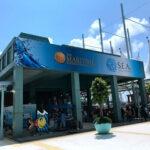 Singapore S.E.A. Aquarium 一日遊